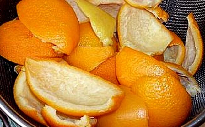 pomerančová kůra - škola Nové Město