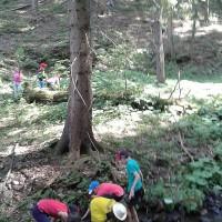 Stavíme hráze (škola v přírodě)